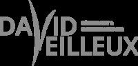 Déneigement et tonte de pelouse David Veilleux